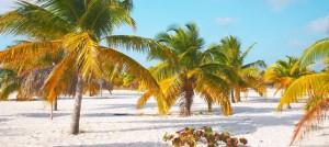 Cayo Largo weather beach
